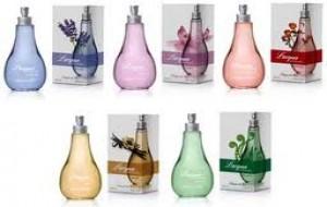 Perfumes L'acqua di Fiori – Catálogo, Lançamentos