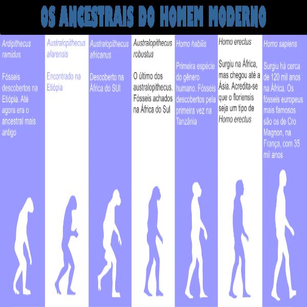 88086 evolução do homem antropologia 600x600 Curso de Antropologia Gratuito EAD