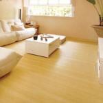 92342 assoalho de madeira 11 150x150 Assoalho de Madeira Preços, Onde Comprar