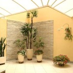 93172 jardim de inverno 1 150x150 Jardim de Inverno Fotos