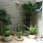 93172 jardim de inverno 7 150x150 Jardim de Inverno Fotos