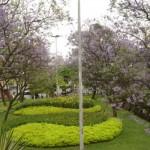 94279 decoração para jardim externo 11 150x150 Decoração de Jardim Externo