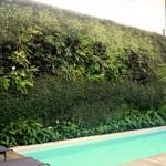 94279 decoração para jardim externo 6 150x150 Decoração de Jardim Externo