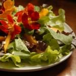 Curso de Culinária Vegetariana 9 150x150 Curso de Culinária Vegetariana