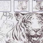 Curso de Desenho Online 8 150x150 Curso de Desenho Online