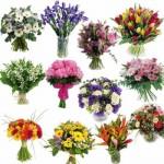 Flores para Homens Sugestões 1 150x150 Flores para Homens Sugestões