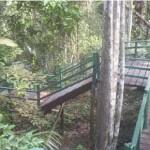 Lugares Turisticos em Manaus AM2 150x150 Lugares Turísticos em Manaus AM