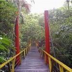 Lugares Turisticos em Manaus AM7 150x150 Lugares Turísticos em Manaus AM
