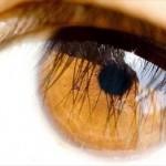 Maquiagem para Destacar Olhos Cor de Mel 1 150x150 Maquiagem para Destacar Olhos Cor de Mel