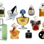 Melhor Perfume Importado Masculino e Feminino 5 150x150 Melhor Perfume Importado Masculino e Feminino