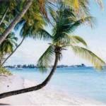 Pacotes de Viagem Para o Caribe5 150x150 Pacotes de Viagem Para o Caribe