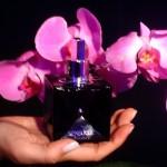 Perfumes Afrodisíacos do Boticário 4 150x150 Perfumes Afrodisíacos do Boticário