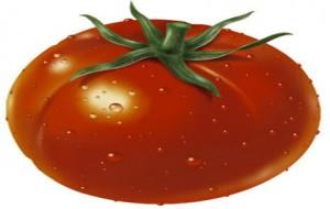Benefícios do Tomate – Tomate: Cheio de Licopeno
