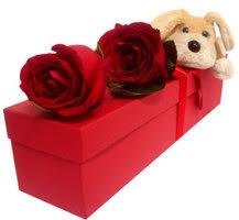 dicas e sugestoes para dia dos namo Presentes para namorado   Dicas e Sugestões