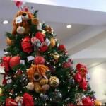 dicas para decorar árvore de natal fotos 3 150x150 Dicas Para Decorar Árvore De Natal, Fotos