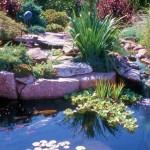 fotos de jardins de casas 4 150x150 Fotos de Jardins de Casas