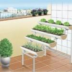 horta suspensa 150x150 Horta em Apartamento, Como Montar
