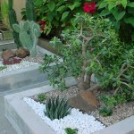 jardim de inverno embaixo da escada 2 150x150 Jardim De Inverno Embaixo Da Escada