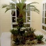 jardim interno como fazer 1 150x150 Jardim Interno Como Fazer