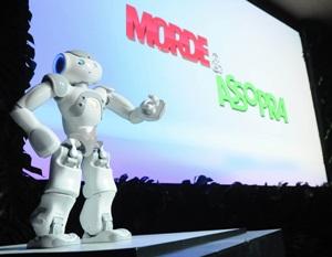 onde comprar robô zariguim 1 Onde Comprar Robô Zariguim