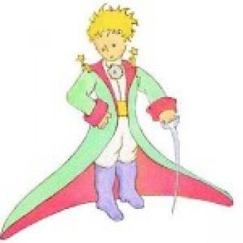 pequeno principe ok Pequeno Príncipe Frases