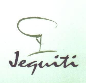 178868 1 Consultora Jequiti   Grupo Silvio Santos (SBT)