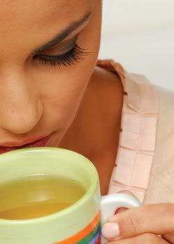 chabranco echaverde diferenas Diferenças do Chá Branco e do Chá Verde