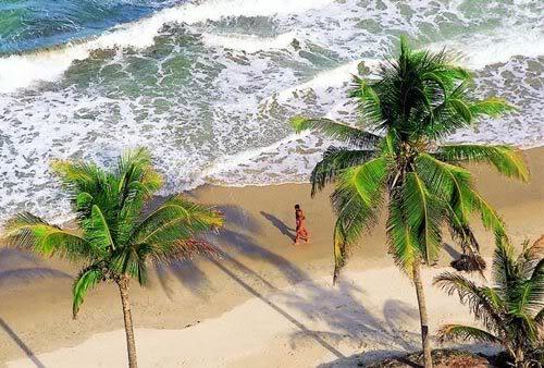 praia tambaba naturismo Praia de Tambaba Paraíba   Naturismo no Brasil