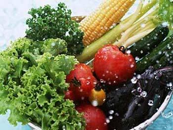 vegetariano Ser Vegetariano é Ser Saudável?
