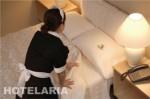 A HOTELARIA 150x99 Curso de Hotelaria Gratuito a Distância