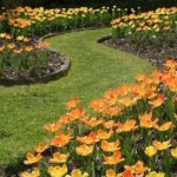 Jardinagem e Paisagismo com Fotos   Jardinagem e Paisagismo com Fotos
