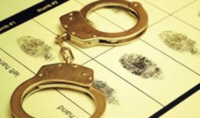 direito penal Cursos de Direito Penal a Distância Gratuito