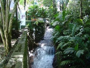 dsc00710 Projetos Paisagísticos Jardins Residenciais