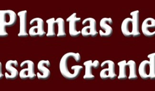 planta de casa grande Plantas de Casas Grandes