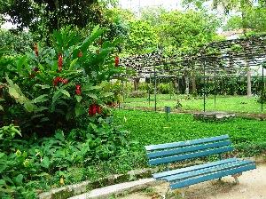 vista com carramanchao1 Jardinagem e Paisagismo com Fotos