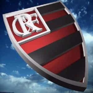 Contratações do Flamengo Para 2011 Contratações do Flamengo Para 2011