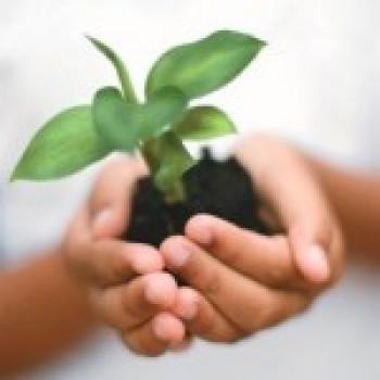 Curso de Ciências Ambientais Cursos de Graduação Curso de Ciências Ambientais: Curso de Graduação