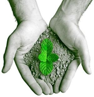 pós graduação em direito ambiental ead gratuito Pós Graduação em Direito Ambiental | EAD Gratuito