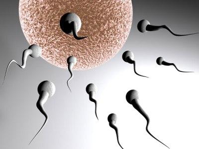 tratamento gratuito de infertilidade Tratamento Gratuito de Infertilidade