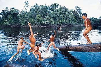Tribos Brasileiras Indígenas5 Tribos Brasileiras Indígenas