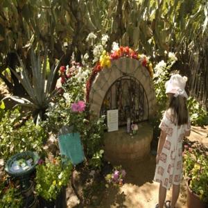 fotos de jardins pequenos Fotos de Jardins Pequenos