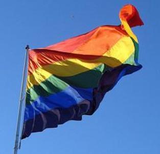 homofóbico significado Homofóbico Significado