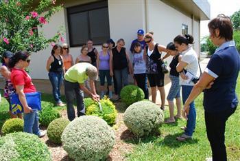 Curso Tecnico de Jardinagem e Paisagismo no Senac Curso Técnico de Jardinagem e Paisagismo no Senac