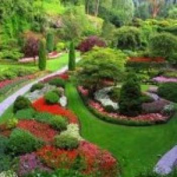 Fotos de Jardins de Flores Fotos de Jardins de Flores