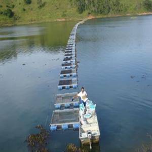curso gratuito de piscicultura Curso Gratuito de Piscicultura