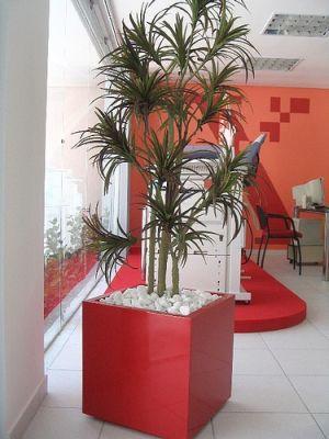 Plantas artificiais para decoração Plantas artificiais para decoração