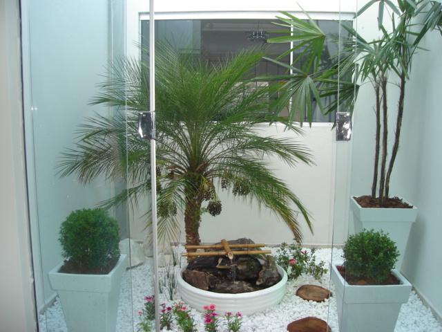 Plantas para Jardim de Inverno 300×225 Plantas para Jardim de Inverno