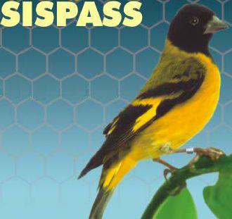 Sispass Relação de Passeriformes Sispass Relação de Passeriformes