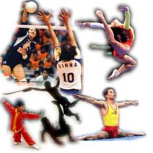 curso de especialização em esportes gratuito mg sp rj es Curso de Especialização em Esportes Gratuito   MG, SP, RJ, ES