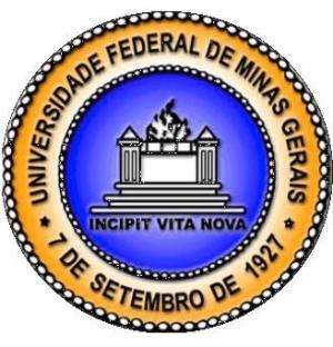 melhores universidades públicas de minas gerais Melhores Universidades Públicas De Minas Gerais